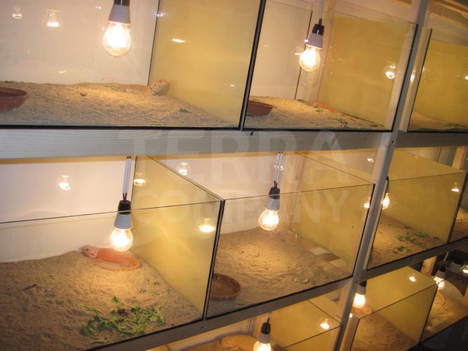 Prostory pro tropická  zvířata původně obývající velice suché oblasti typu poušť/polopoušť